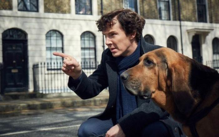 sherlock and dog