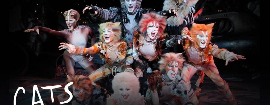 Jennifer Hudson, Taylor Swift, And More Join…A 'Cats' Movie?