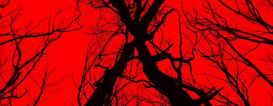 'Blair Witch' Review
